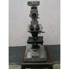 高级奥林巴斯显微镜(OLYMPUS)
