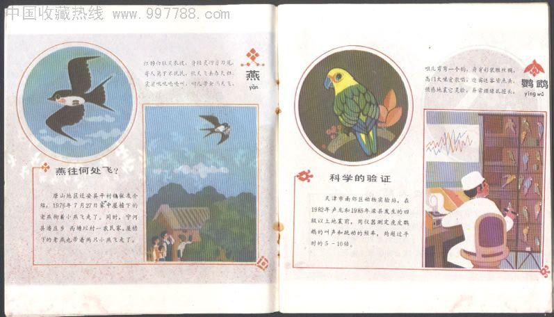 地震对策科普画册---动物之谜