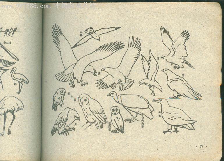 简笔画典.59年出版.教小朋友初学画画