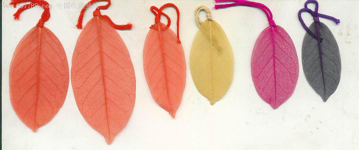 一组六枚不知用什么树叶做的数签【罕见】,书签/藏书