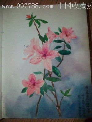 水彩风景和花卉图案)补图