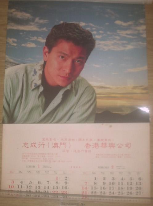 1993年明星挂历图片