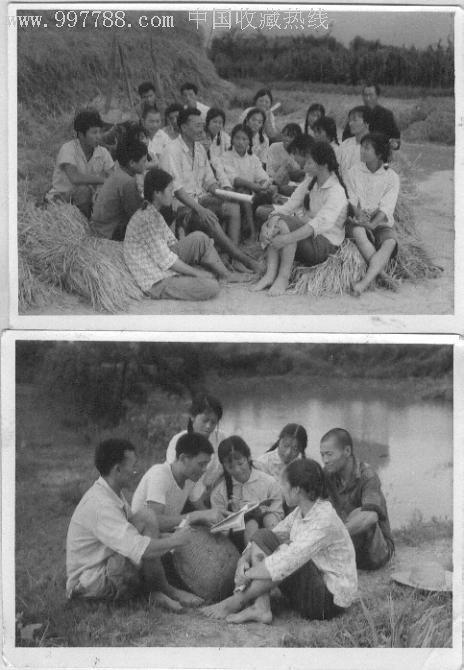 知识青年下乡劳动照片图片