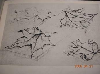 瑞士巴塞尔设计学校设计素描