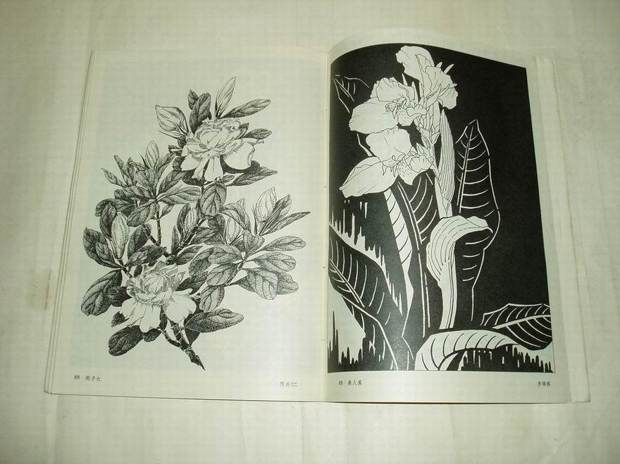 16开.花卉黑白画
