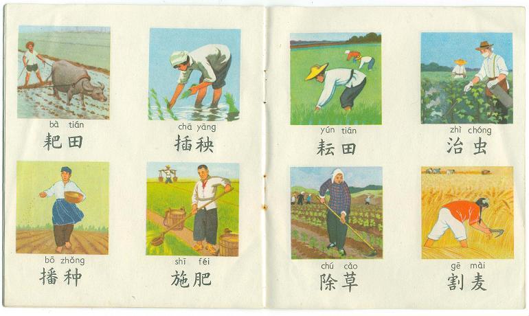 农村儿童看图识字(2)