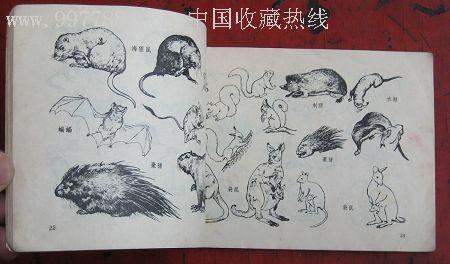 动物画参考资料,绘画期刊,正刊,其它绘画类期刊,黑白绘画,文革期间(19