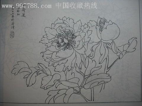 牡丹花简单素描_素描牡丹花图片