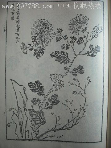 梅兰竹菊四谱_价格元_第7张