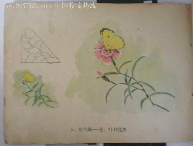 57年小学五年级美术-价格:5元-se5948137-课本/教材图片