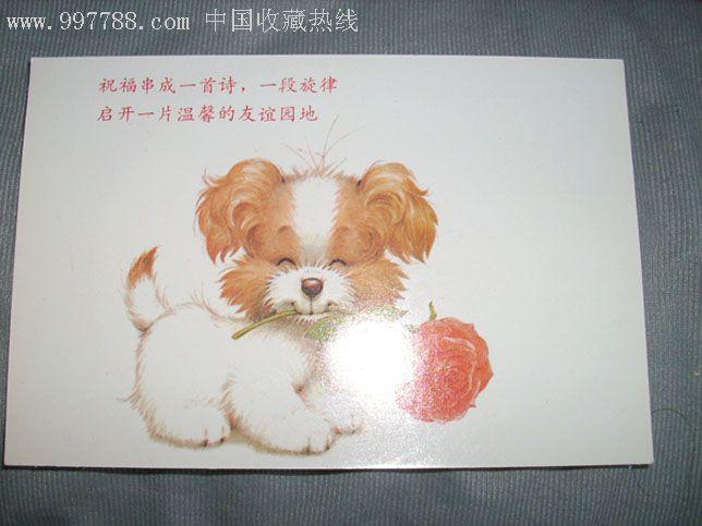 可爱的小狗与玫瑰花
