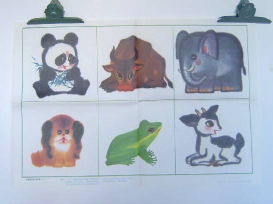 初中看图作文教学图片(2)你最喜欢哪一种动物
