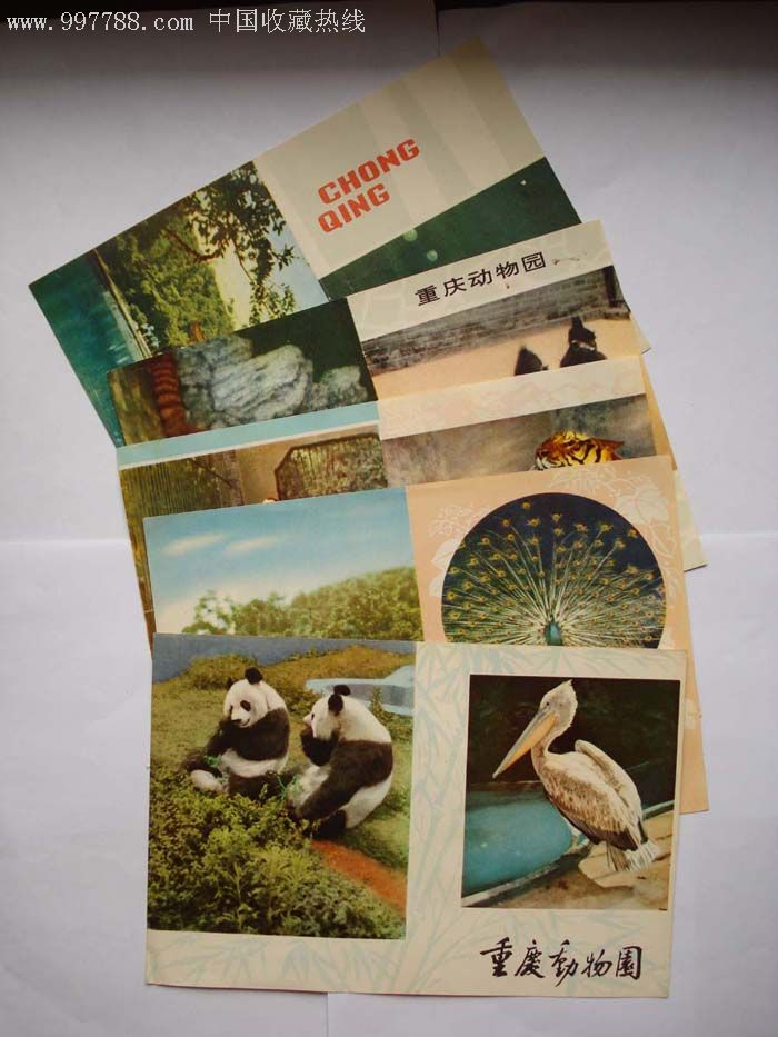 重庆动物园导游图:5x1