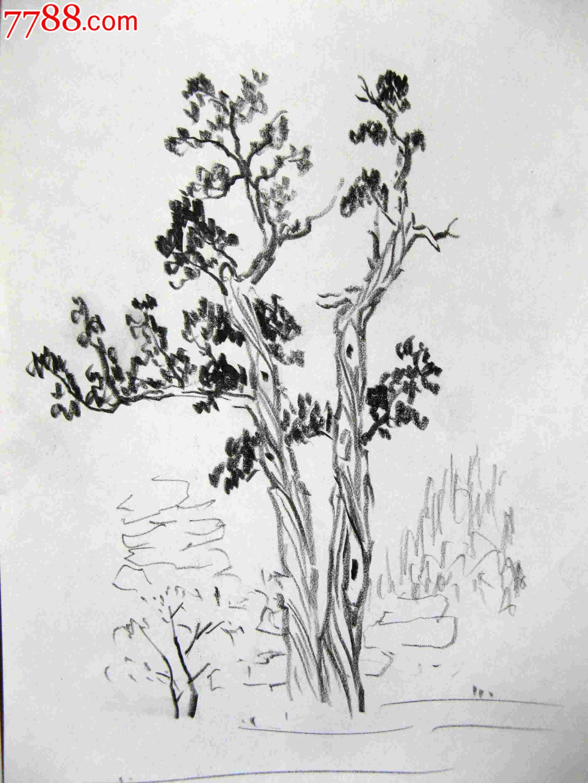 画家素描画稿树木画2幅