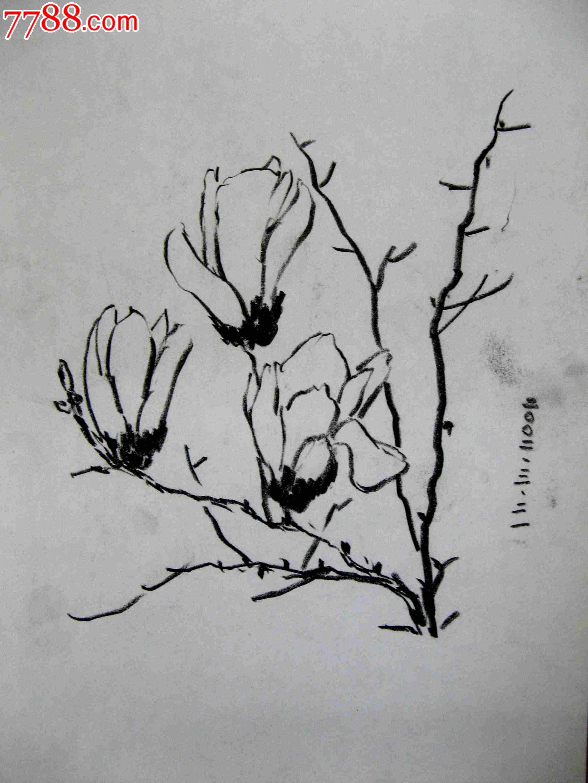 画家素描画稿花卉画3幅