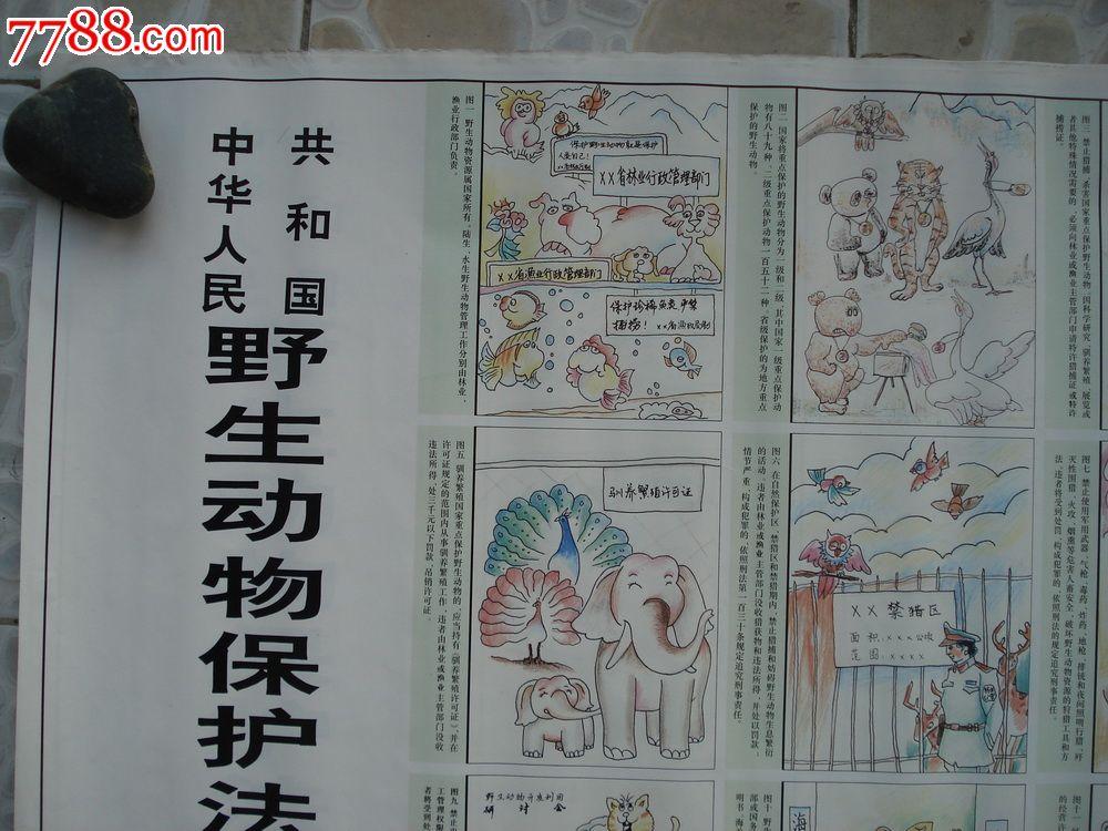中国野生动物保护法图解-au5950102-年画/宣传画-加价