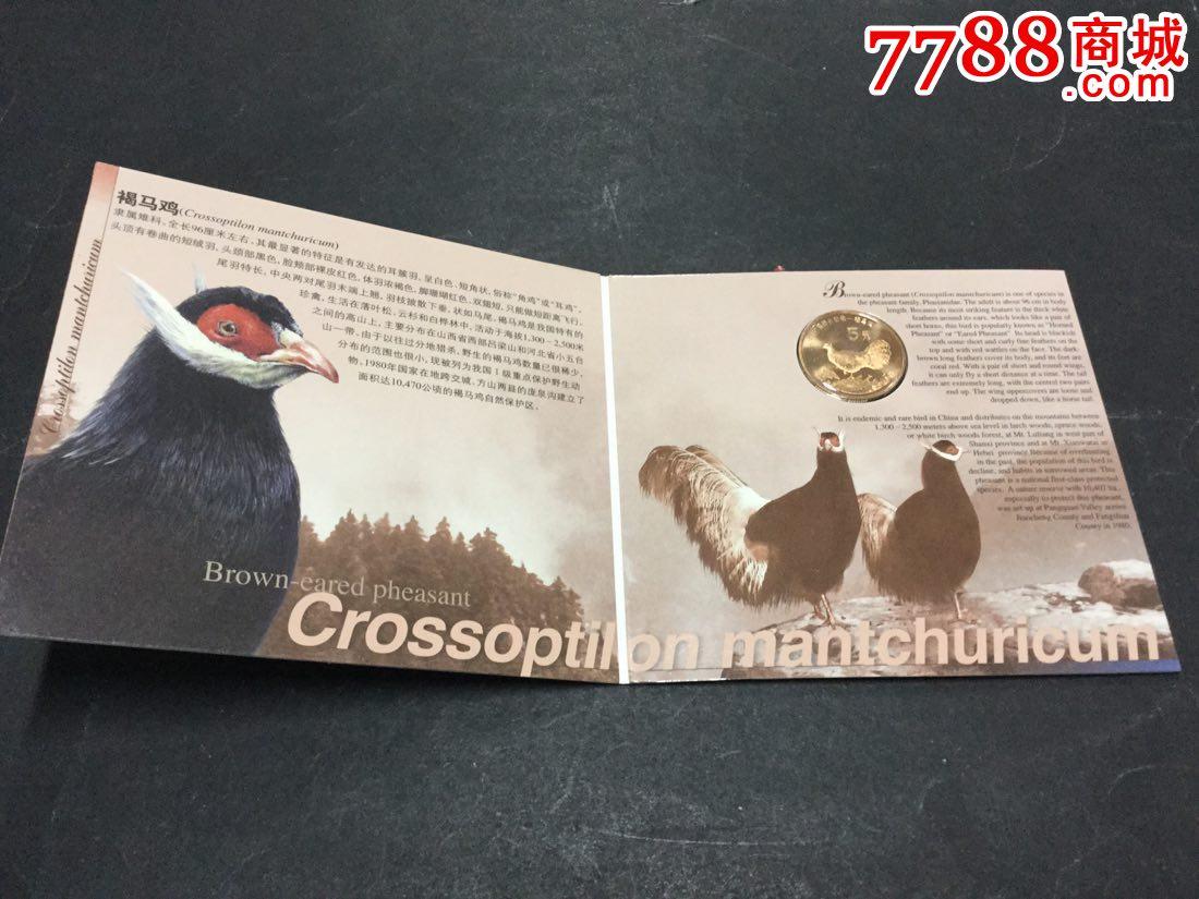 中国珍稀野生动物一褐马鸡