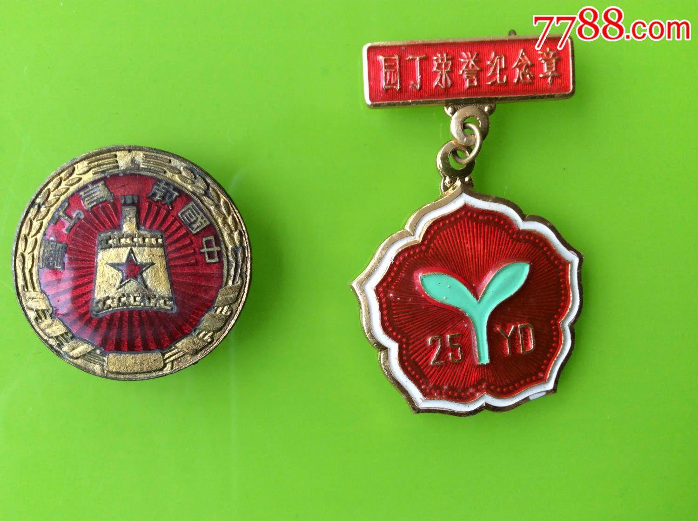 如东县镇东小学一位老教师的各种徽章11枚合拍【详情仔细看图】